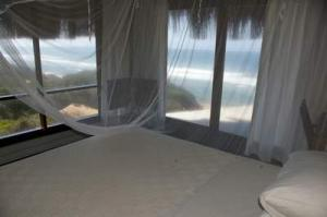 205 north bed with view 11